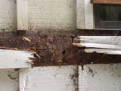 Dry Rot Exterior Repair Project