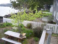 Wild Man Farm » Blog Archive » Building a Picket Fence